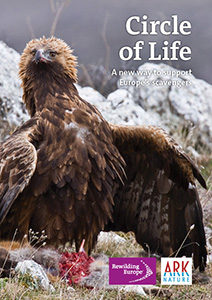 Circle of Life is a new approach put forward by Rewilding Europe and partners to support Europe's scavengers.
