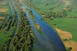 Aerials over the Danube Delta rewilding area, Romania.
