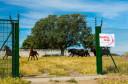 Campanarios de Azaba Biological Reserve, Salamanc, Castilla y Leon, Spain, Europe