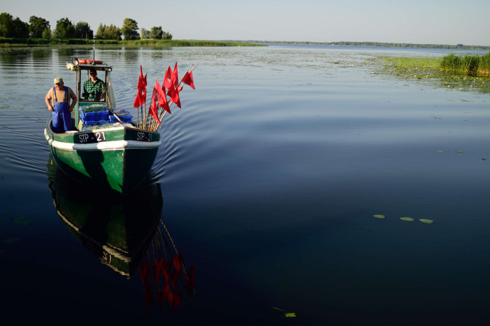 The damage caused by Poland's inland waterways programme will be irreversible and impossible to compensate for. It will also disrupt much of the work that Rewilding Europe and its partners have carried out to date in the Oder Delta.
