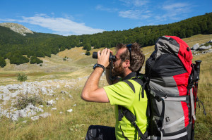 Wildlife watching in the Central Apennines