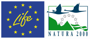 "The project ""Urgent actions for the recovery of European Bison populations in Romania"" (LIFE14 NAT/NL/000987) is funded by LIFE financial instrument of the European Community."