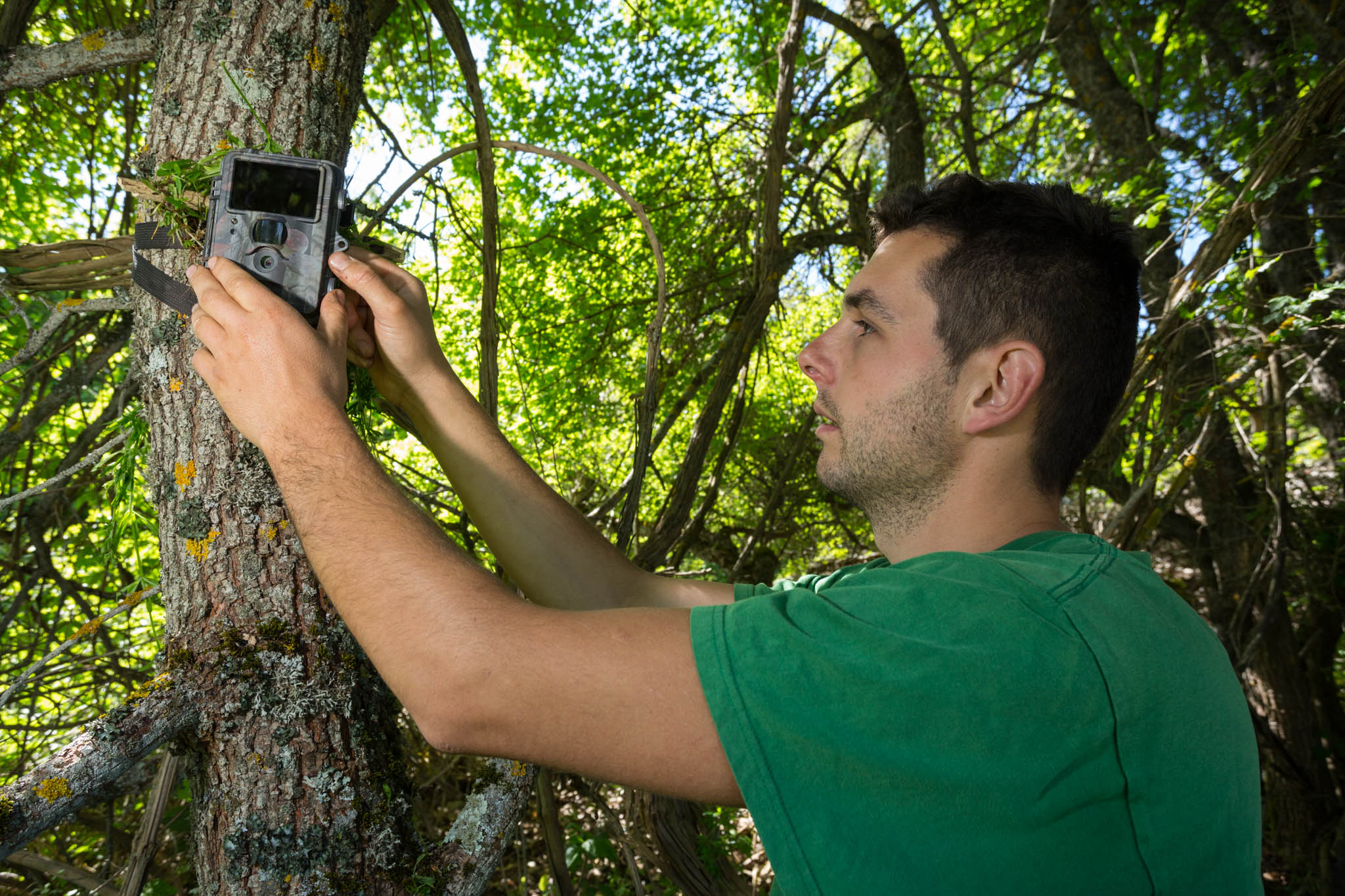 Bear advocate Matteo Simonicca learning how to set up a trail camera