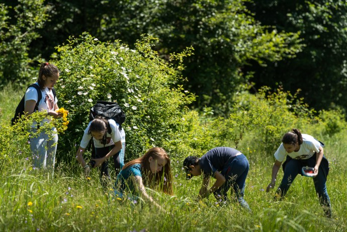 Rewilding Southern Carpathians team is working to involve youngsters in the conservation of local wild nature.