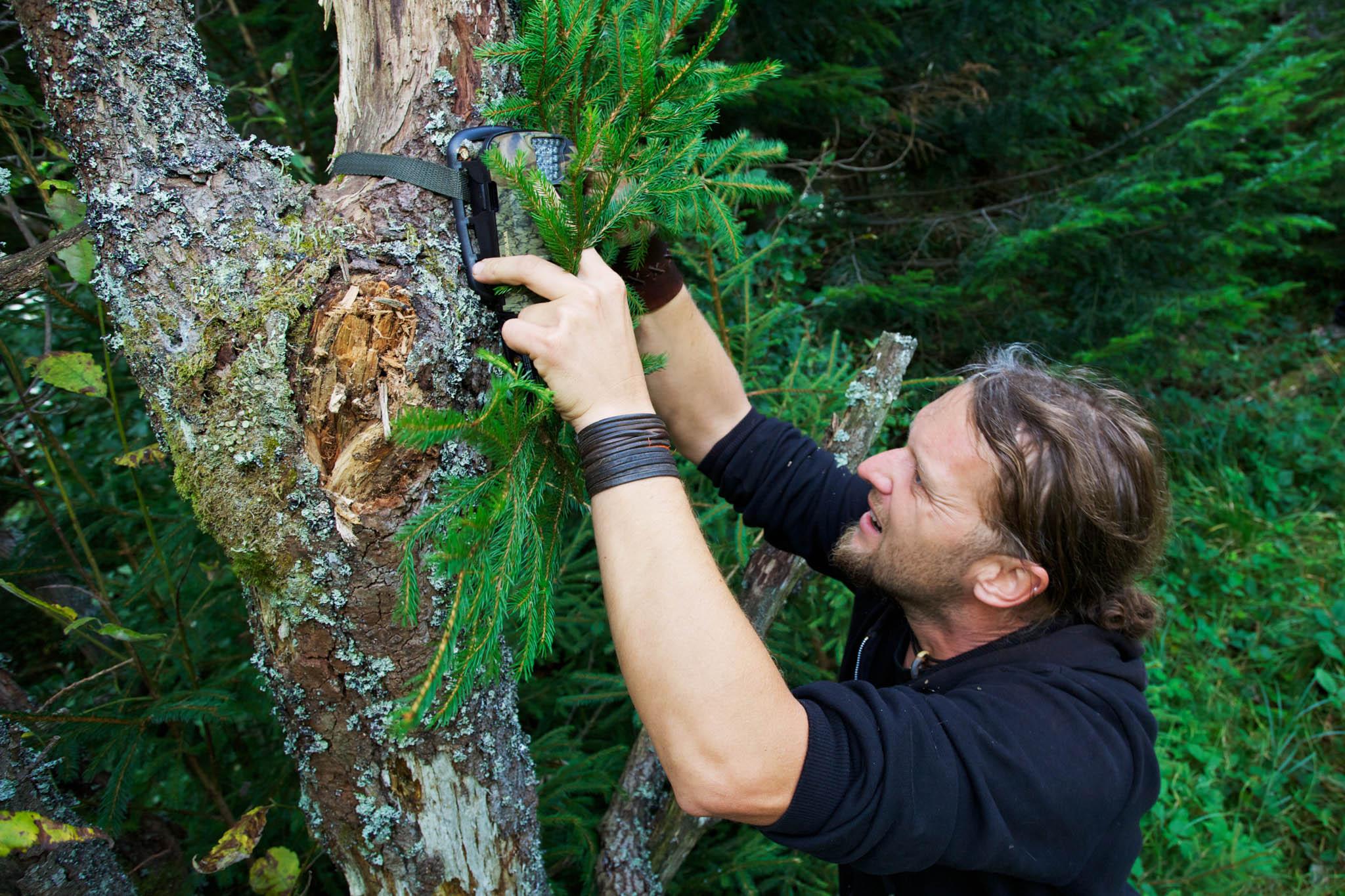 Wildlife biologist Bartosz Pirga mounting an infra-red wildlife monitoring camera