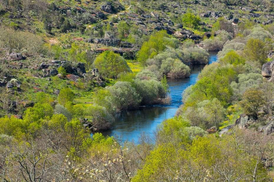 Côa Valley, Western Iberia, Portugal