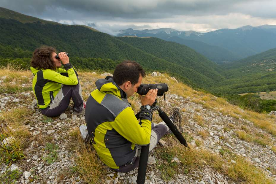 Guides scanning mountain slopes while leading a group for a bearwatching excursion, Central Apennines, Italy