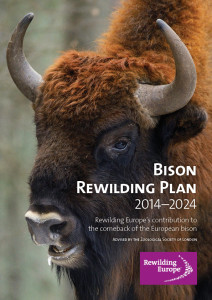 Rewilding Europe sets out its vision of restoring viable, free-ranging bison populations across Europe.