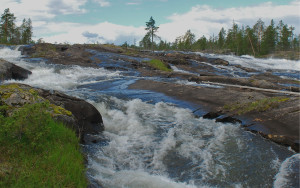 Rewilding Lapland in cooperation with the Pite River local association plans to restore a 9 km long part of the Pite River near the spectacular water rapids of Trollforsen.