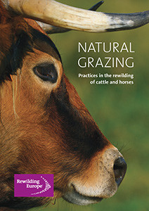 A publication on natural grazing compiled by Rewilding Europe.