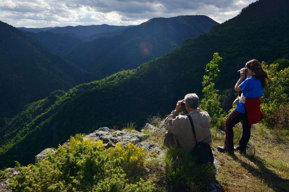Wildlife watching ecotourism, Rhodope Mountains, Bulgaria