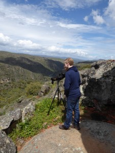 Tristan birdwatching in Mid Côa Valley, Western Iberia rewilding landscape, Portugal.