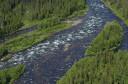 Peat bog lands and taiga boreal forest, Sjaunja Bird Protection Area, Lapland rewilding area, Sweden.