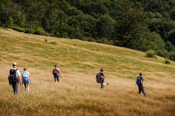 Exploring the Southern Carpathian wilderness