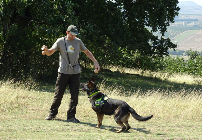 Training of the Antipoison Dog Unit, Nikolay Terziev and his four-legged team member Bars, by MME - Hungarian Birdlife partner.