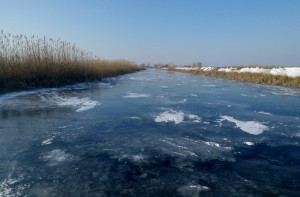 Sfântu Gheorghe Danube branch is shallow and sinuous, so the smaller tributaries freeze during extremely low temperatures.