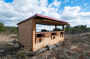 The hide was built with the support of Rewilding Europe Capital, in cooperation with local NGO Associação Transumância e Natureza.