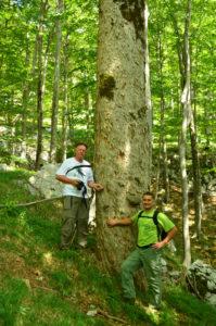 Professor Joso Vukelić (left) and his colleague Stjepan Mikac (right) in Velebit rewilding area.